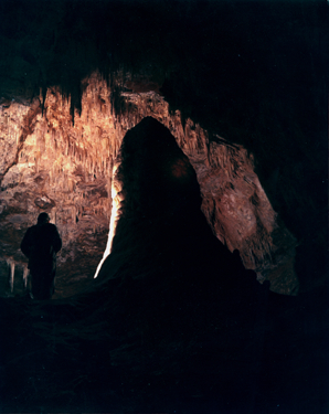 The white Giant                                 Carlsbad Caverns New Mexico