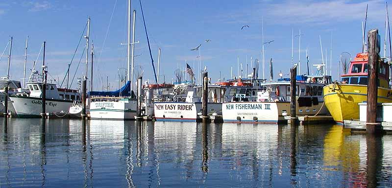 Berkeley marina fishing boats for Berkeley fishing charter